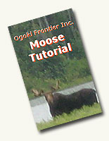 Moose Tutorial